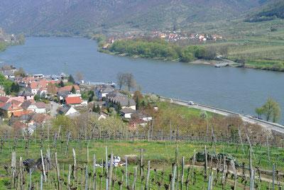 Blick auf Spitz an der Donau