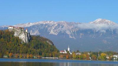 L'endroit incontournable de la semaine: Bled.