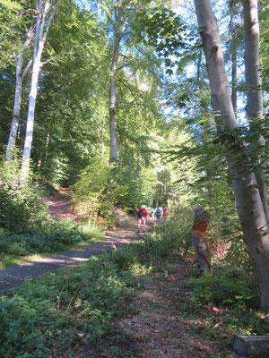 Auch Holzskulpturen säumten die erste Teilstrecke unseres Rundwegs
