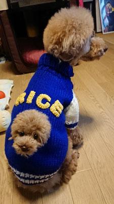 RICEくん
