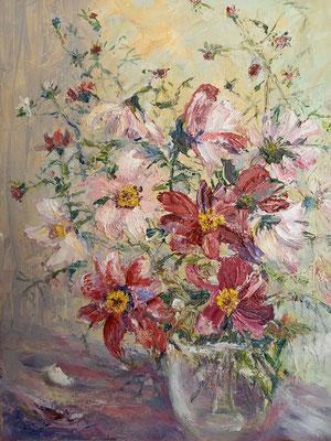 Cosmea Öl, 40 x 50 cm