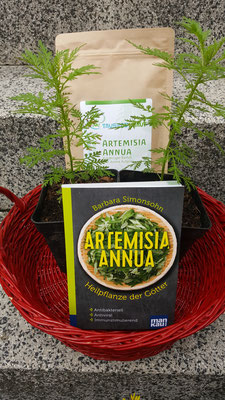 Literatur, Artemisia Annua, Workshop Beigabe, Klima Gourmet 2021