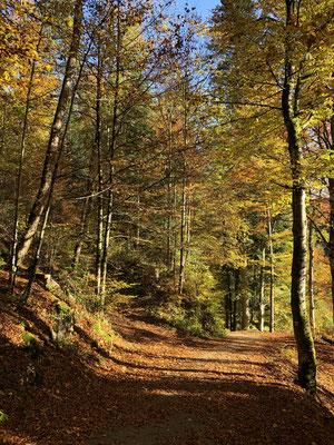 Auf dem Weg zum Saut du Doubs