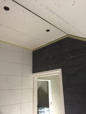 plafond platen erin