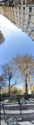 Pano Long arbre 26