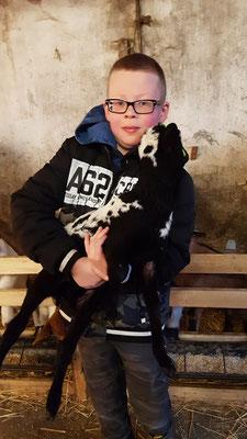 EIn Schüler hält ein kleines Schaf auf dem Arm