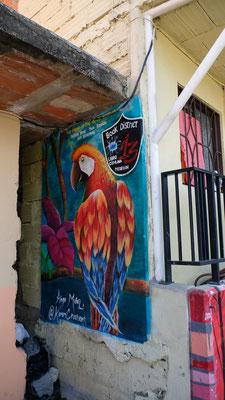 Wunderschöne Graffitis...