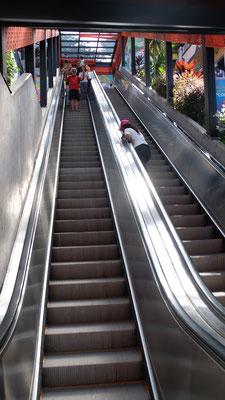 .... verschiedene Rolltreppen erleichtern den Aufstieg....