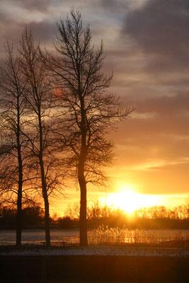 Sonnenuntergang am See. Foto: Frederike Brückner