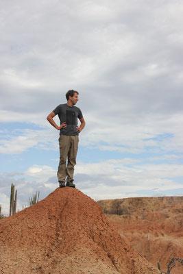 King of the Desert.