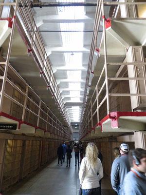 Die Zellen sind in mehreren Gängen angeordnet.