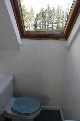 Toilet (small apartment)
