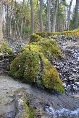 Steinerne Rinne bei Weißenburg