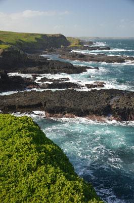 La côite escarpée de Philipp Island - Trip85.com