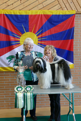 Klub Veteranen Sieger, Ti La Shu Glitter Diamond