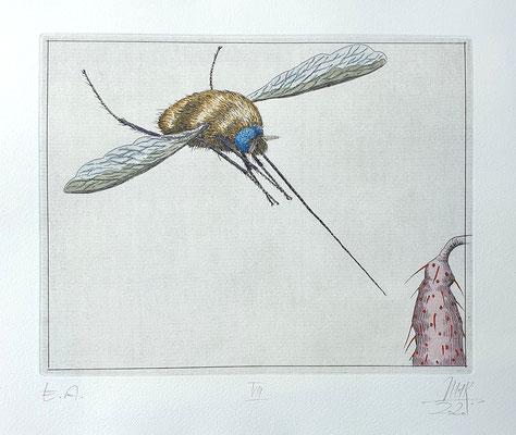 Ulf H. Rickmann, Blatt VIII (Insektenserie) Strichätzung koloriert, 20x15cm, 2020 - 300 EUR