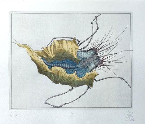 Ulf H. Rickmann, Blatt IX (Insektenserie) Strichätzung koloriert, 20x15cm, 2020 - 300 EUR