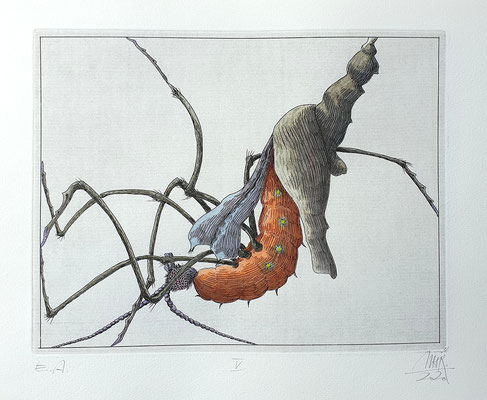 Ulf H. Rickmann, Blatt V (Insektenserie) Strichätzung koloriert, 20x15cm, 2020 - 300 EUR