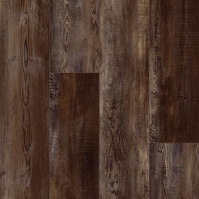 Windburned Bark (128)