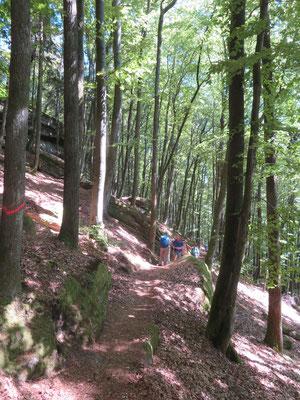 ein schmalerund holpriger  Pfad führt zu den Hohlen Felsen. Leider versuchen dennoch Radfahrer, hier durchzukommen.