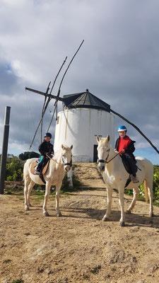 Ausritt zu den Windmühlen von Vejer