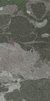 Aparici Lithops Hopi stamp 2 cm