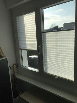 Plissee-Sichtschutz, EFH-Rothenburg