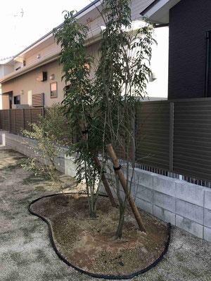 リサイクルエッジの見切と植栽