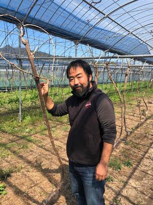 香月ワインズ2019年春の畑と香月さん
