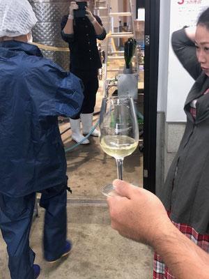香月ワイン2019ヴィンテージアヤブラン タンク直試飲
