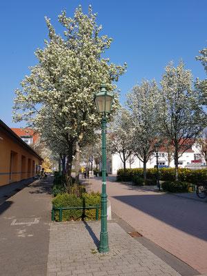 Präsidentenstraße, andere Seite