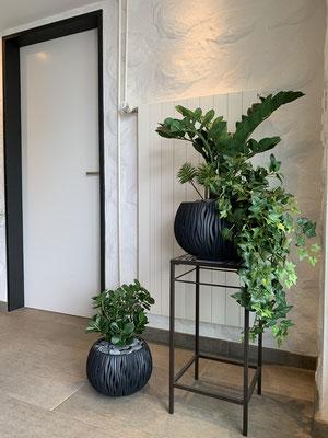 Grünpflanzen echt wirkend