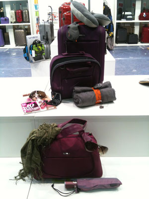 samsonite visual merchandising