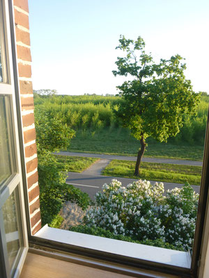 Blick aus dem Turmfenster auf den Elberadweg