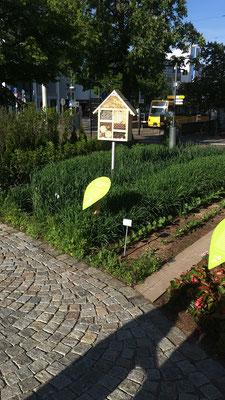 Unser Beitrag zur Remstalgartenschau 2019