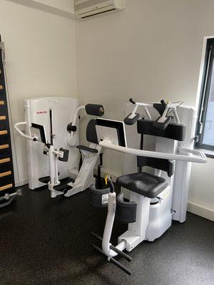 Het DAVID concept dat zowel de mobiliteit als de kracht van de wervelkolom traint door nauwgelette controle van de lichamelijke aanpassingsprocessen.