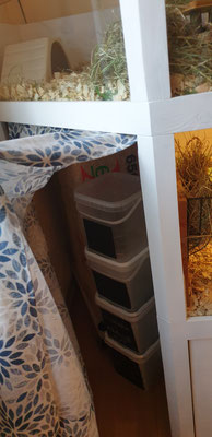 Der Vorhang versteckt die Späne und Kräuter-Eimer auf der Fensterseite.