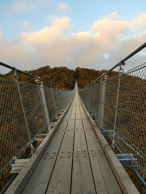 """Hängeseilbrücke Mörsdorf """"Geierlay"""" in 100m Höhe mit 360m Länge"""