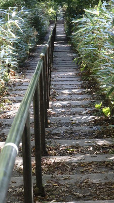 山中湖で気持ちのいい秋晴れの日、午後がぱっくり空いたのでいてもたってもいられず一人で石割山に登ってきた!