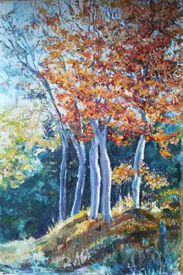 Bäume im Herbst, Öl, 40 x 60 cm