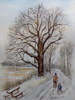 Winter an der Verlobungseiche, Aquarell, etwa 30 x 20 cm