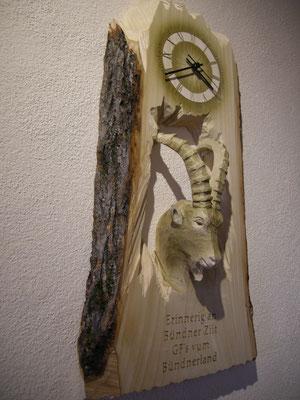 Steinbock Kopf