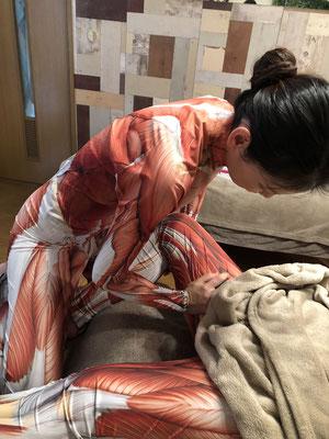 現在はマンツーマン受講のため、筋肉人形を着てのレッスンはございません
