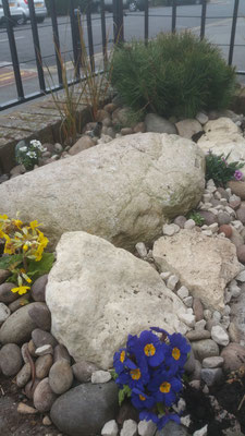 rockery for sea ridge chalkwell project