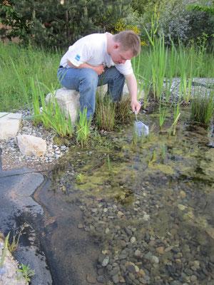 Wir suchen ganz kleine Tiere im Wasser.