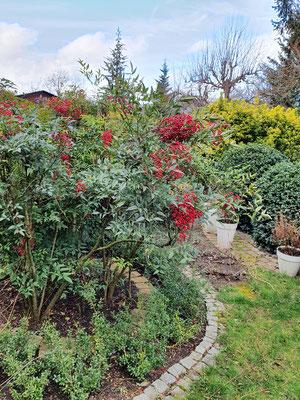 Geglücktes Wohnambiente, ein gepflegter Garten!