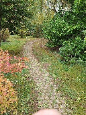 alte Wege erneuern in Freiburg und Umgebung