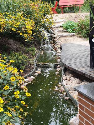 Teich mit Bachlauf zur Sauerstoff-Anreicherung