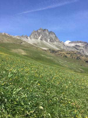Mount La Greve