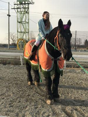 ばんえい記念サプライズ誘導馬リッキー。御年21歳